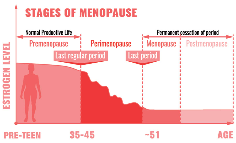 Graphic showing stages of menopause - Pre-Teen = Premenopause, 35-45 = Perimenopause, about age 51 Menopause, older = Postmenopause. The last regular period is at the end of the premenopause stage and the last period begins the menopause stage.