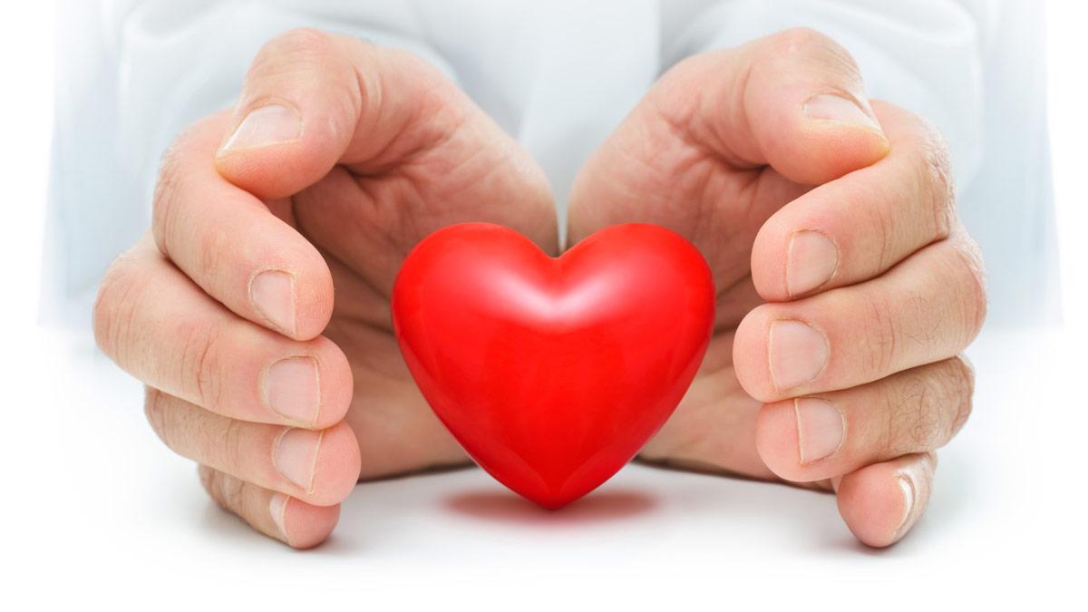 Hands surrounding a heart. Organ Donation article image.