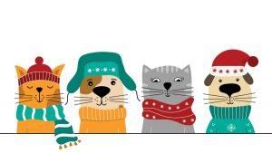 An illustration of pets in winter gear.