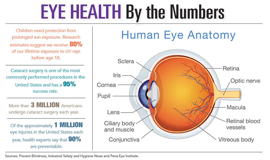 Eye Health by the Numbers