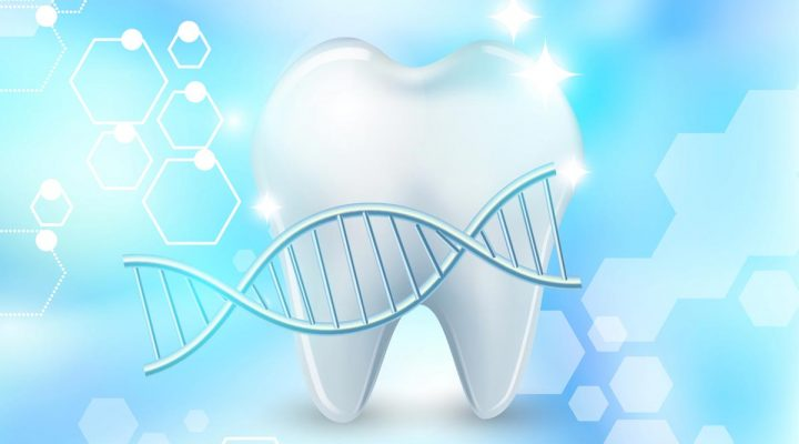 An illustration: Are Good Teeth in Your Genes?